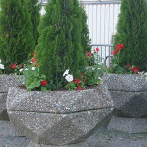 Blom-3 plantekasse